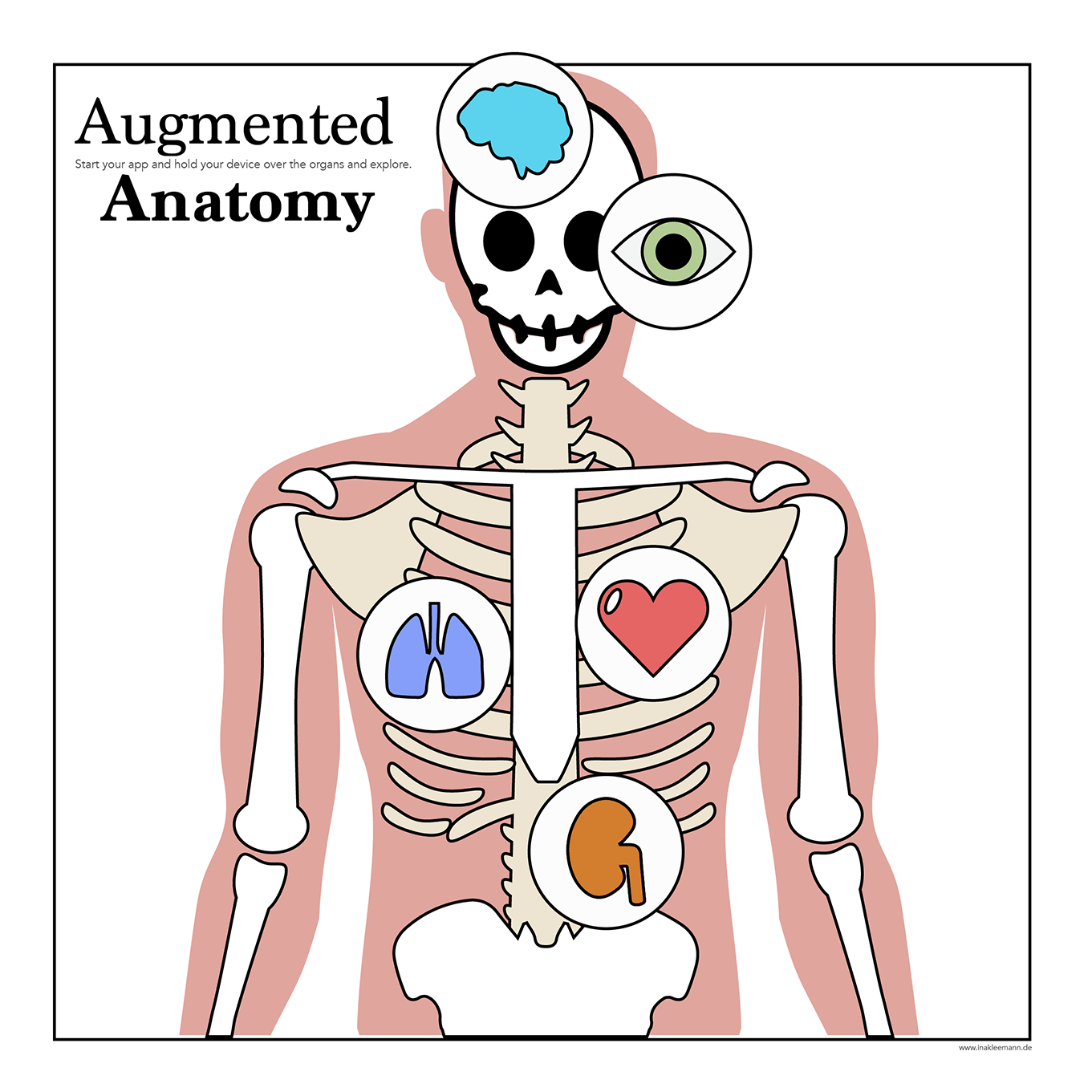 Fantastic Anatomy 4d App Crest Anatomy Ideas Yunokifo